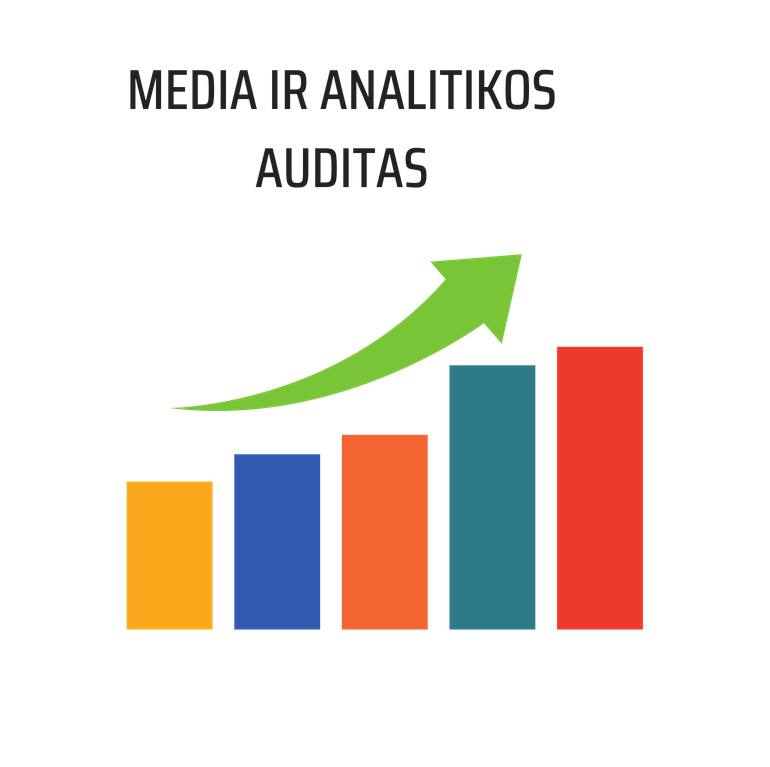 MEDIA IR ANALITIKOS AUDITAS